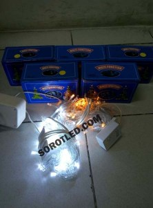 Lampu Natal LED 10meter RGB White Yellow