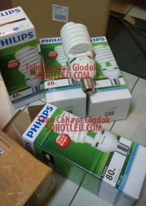 Philips EHL Twister 80watt 6500K E40